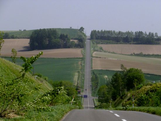 ジェットコースターの路2.jpg