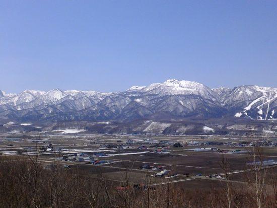八幡丘よち.jpg