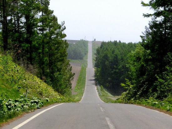 就実の丘への坂.jpg