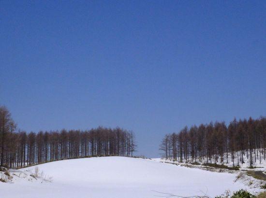 残雪と青空.jpg