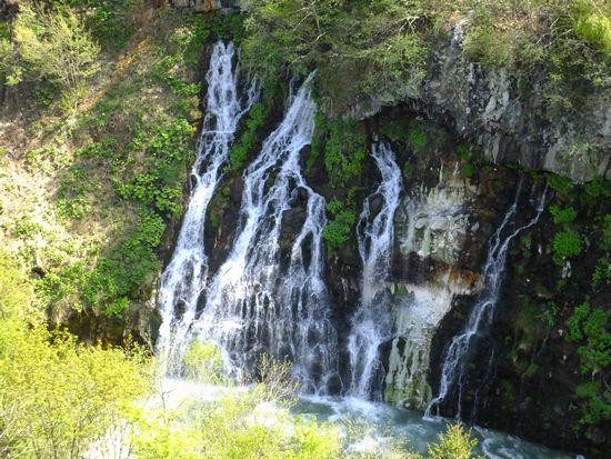 白ひげの滝2.jpg